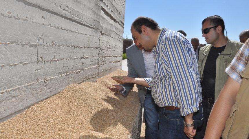 زيارة وزير التموين خالد حنفي في ابريل 2014